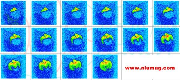 小核磁植物根系水分分布测定