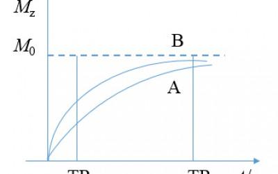 核磁共振 脉冲序列重复时间TR与组织对比