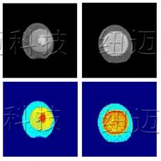 新鲜鸭蛋与咸鸭蛋的低场核磁共振成像与分析测试