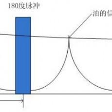 核磁共振法测试油料种子含油含水率原理