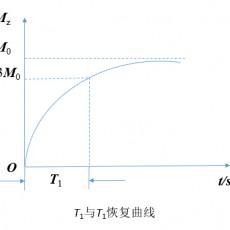 核磁共振T1弛豫时间 纵向弛豫过程及磁共振T1造影剂的应用