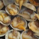 青柳蛤干制过程的水分分布与迁移规律的研究