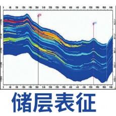 【油气专栏】储层表征的他山之石–核磁共振纳米孔隙分析法