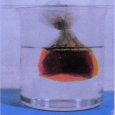 【油气专栏】核磁揭示动态自渗过程