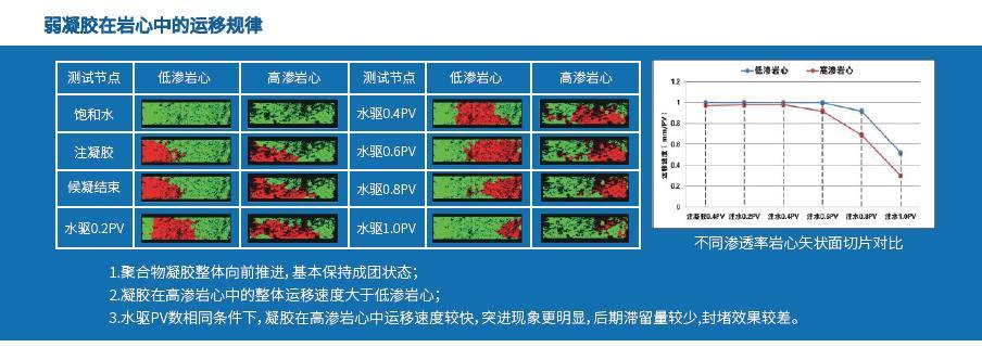 高温高压核磁共振成像分析仪-定制产品