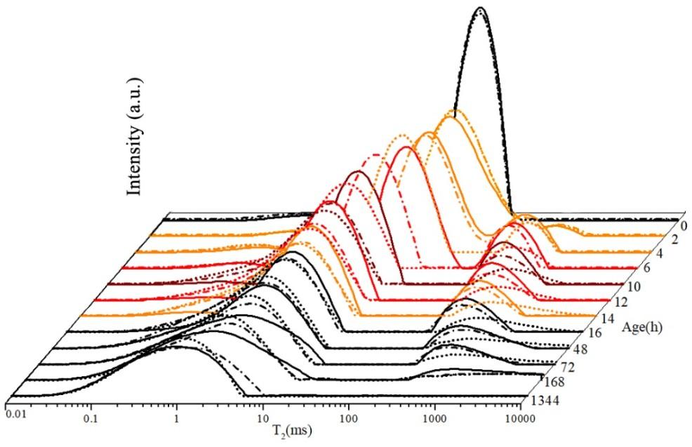 水泥水化程度表征-低场核磁共振分析仪
