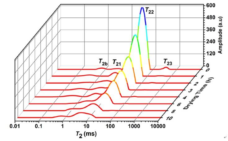 低场核磁共振与磁共振成像监测虾干过程中水分动态变化